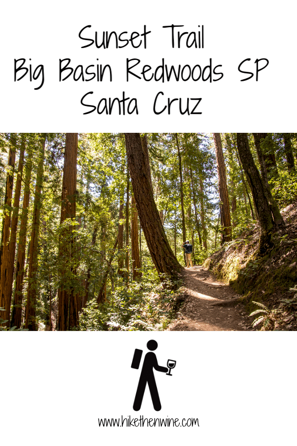 Sunset Trail in Big Basin Redwoods SP - Santa Cruz   Hike Then Wine