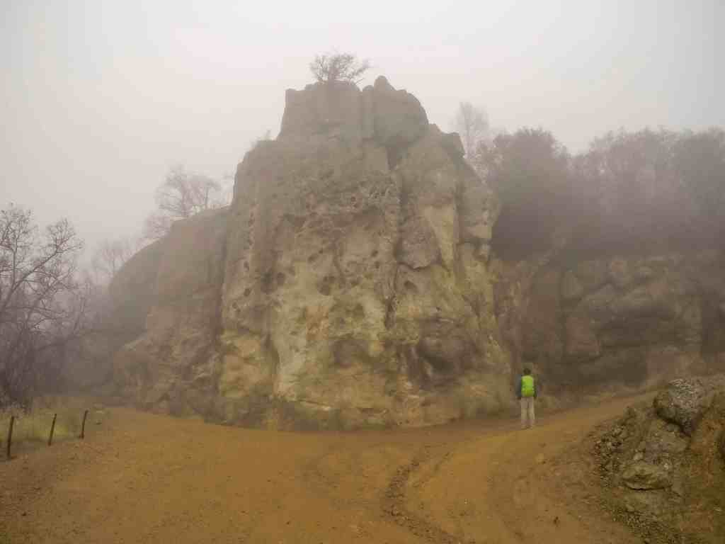 Misty Mt St Helena – Napa | Hike Then Wine