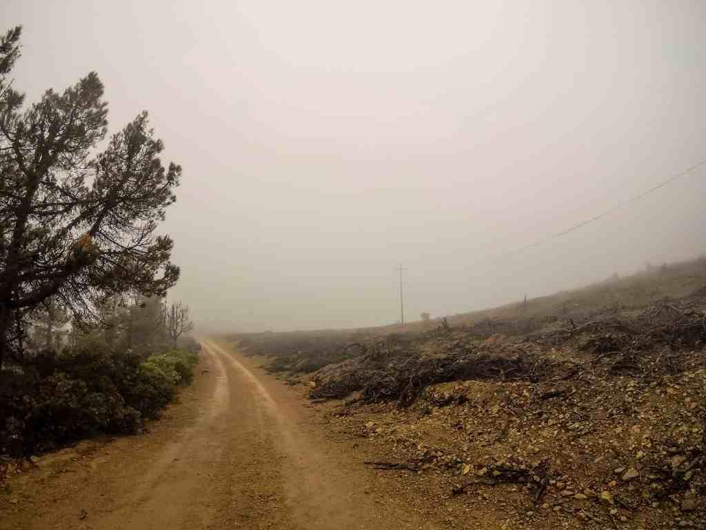 Misty Mt St Helena – Napa | Hike Then Wine