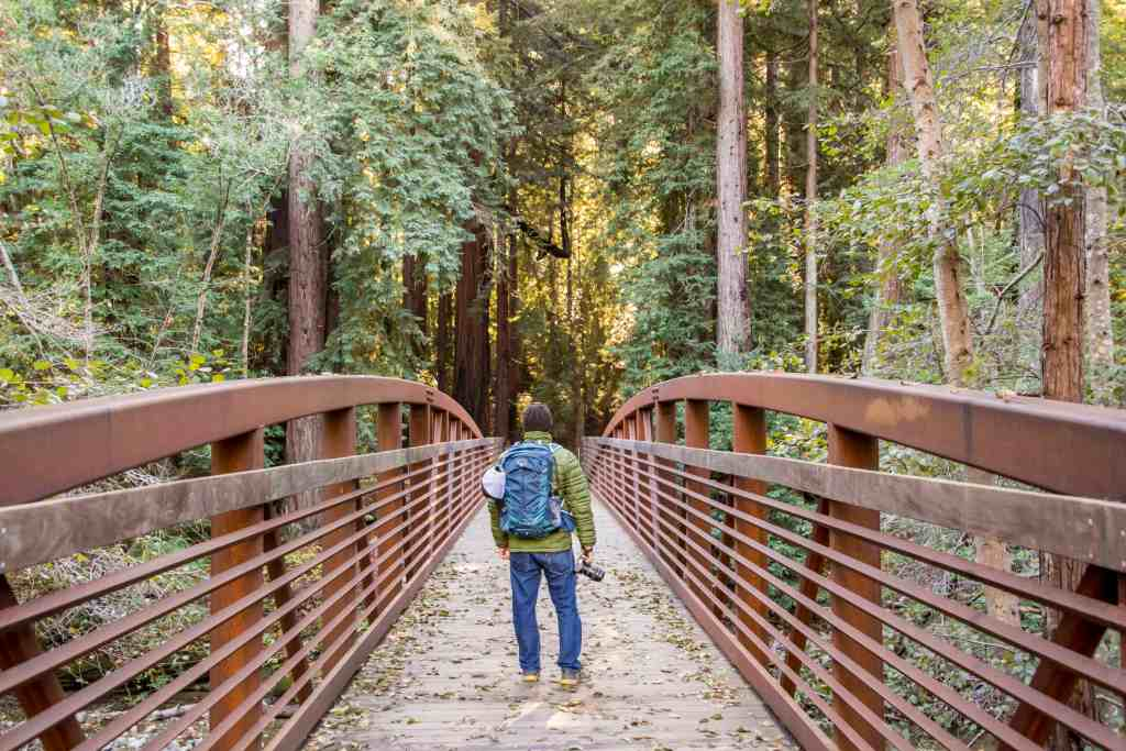 24 (amazing) Hours in Pfeiffer Big Sur State Park | Hike Then Wine
