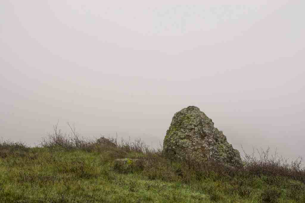 Exploring Saddle Mountain with LandPaths | Hike Then Wine