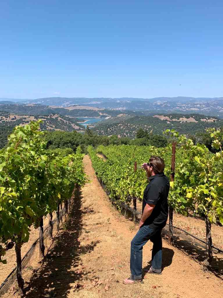 tasting wine in the vineyard