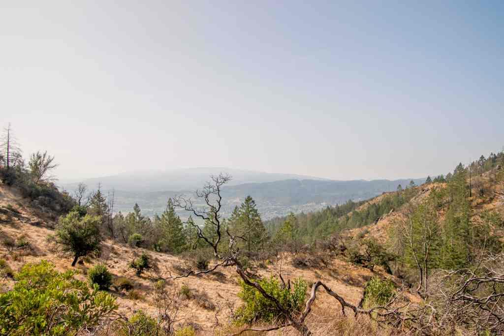 views of sonoma valley rom lawson trail
