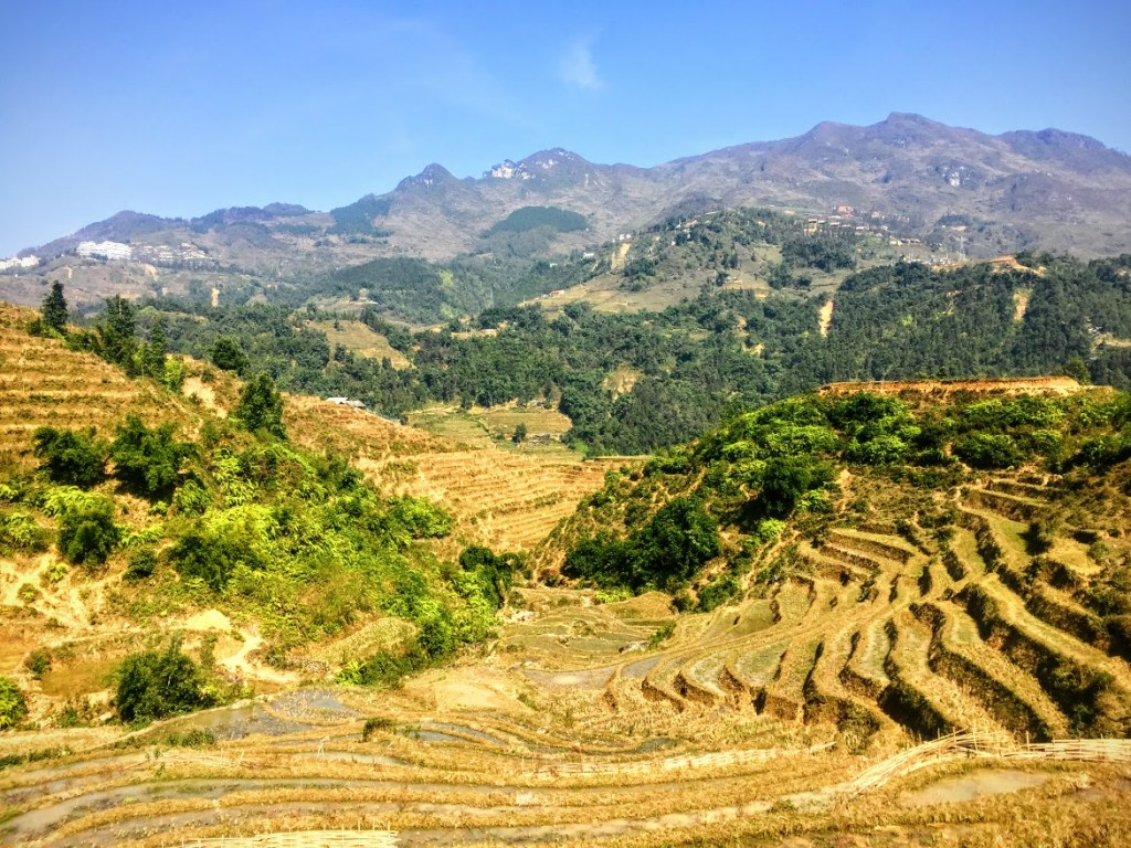 Hike Up Your Skirt Travel and Adventure Blog Vegetarian Food in Vietnam