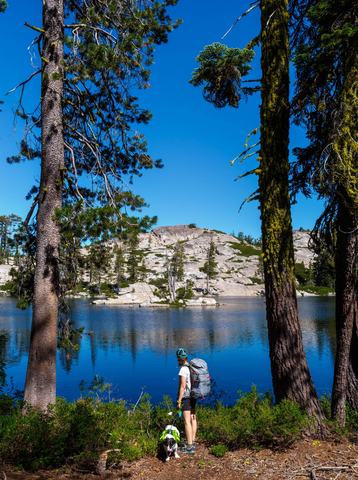 hiking with a dog at the best lake tahoe campsite, loch leven