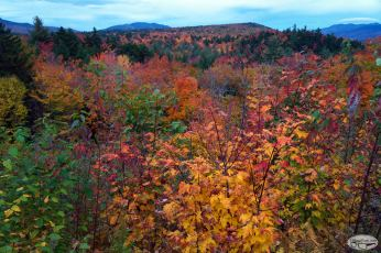 Mount Willard, October 8 2016