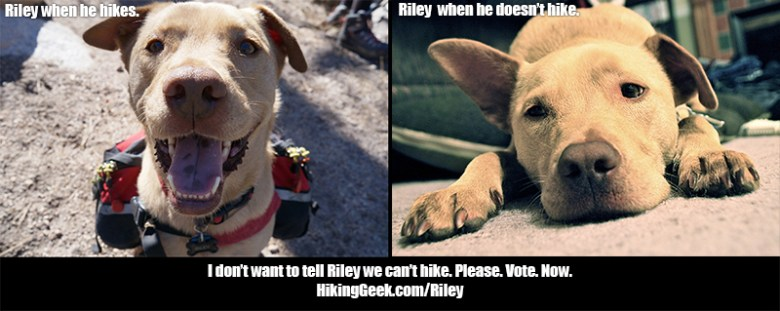 Help Riley and Lyndon live their Kurgo Adventure.