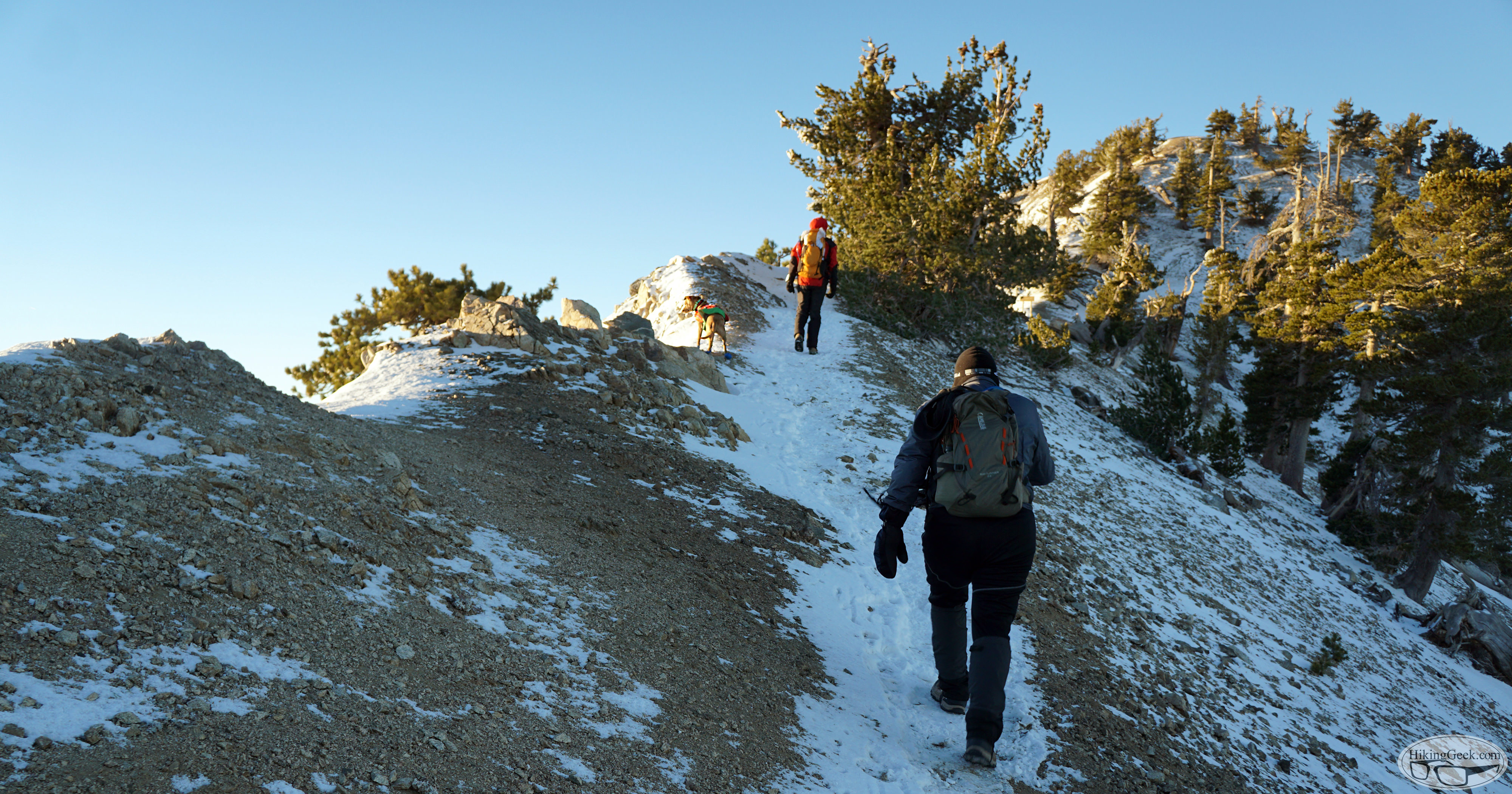 Hiking with Dogs: Mt. Baden-Powell, December 13 2015