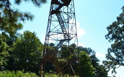 Hiking with Shawn's Trail Guide Series: Trigg Observation Tower