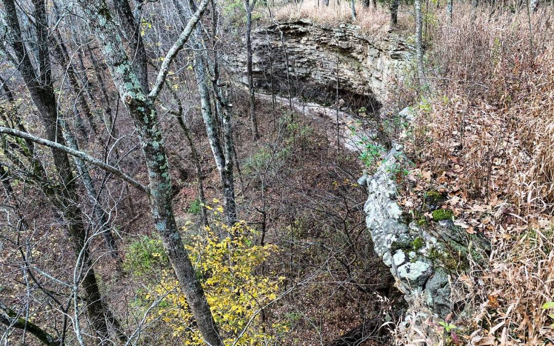 Hiking with Shawn's Trail Guide Series: Wildcat Bluff