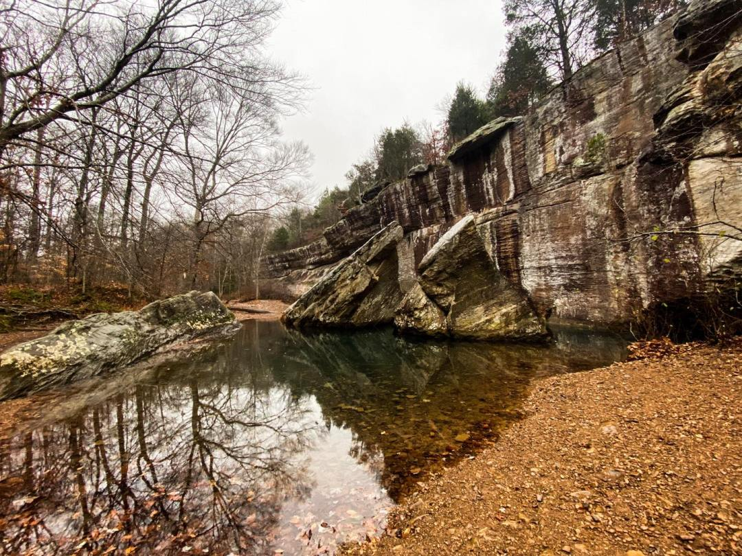Bell Smith Springs