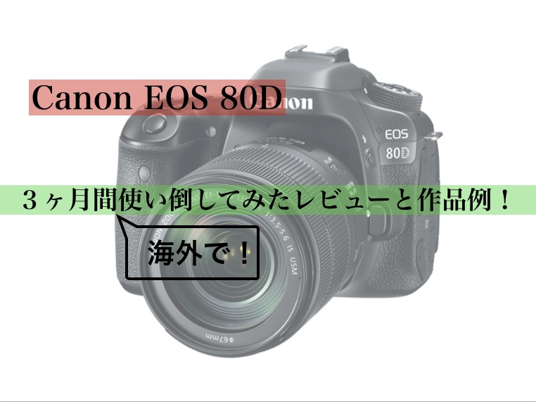 f:id:hiko_pro:20190124003302j:plain