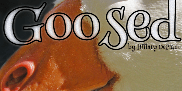 Introducing Goosed! a new play in the style of classic Italian slapstick comedy