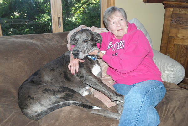 Judy Dannenfelser relaxes with Titan on her living room couch while waiting for the DeJaynes family to arrive. ?This dog has a story,? she said about the Great Dane?s nine-month absence. She and Mary Beth Bowers are hoping people who encountered Titan will contact them to fill in the gaps.