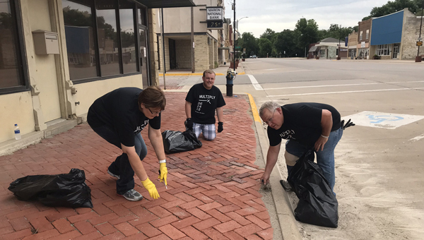 Melanie and Dale Franz and son Darren pull weeds Sunday along sidewalks in Marion's downtown business district as their contribution to HMBC's service day.