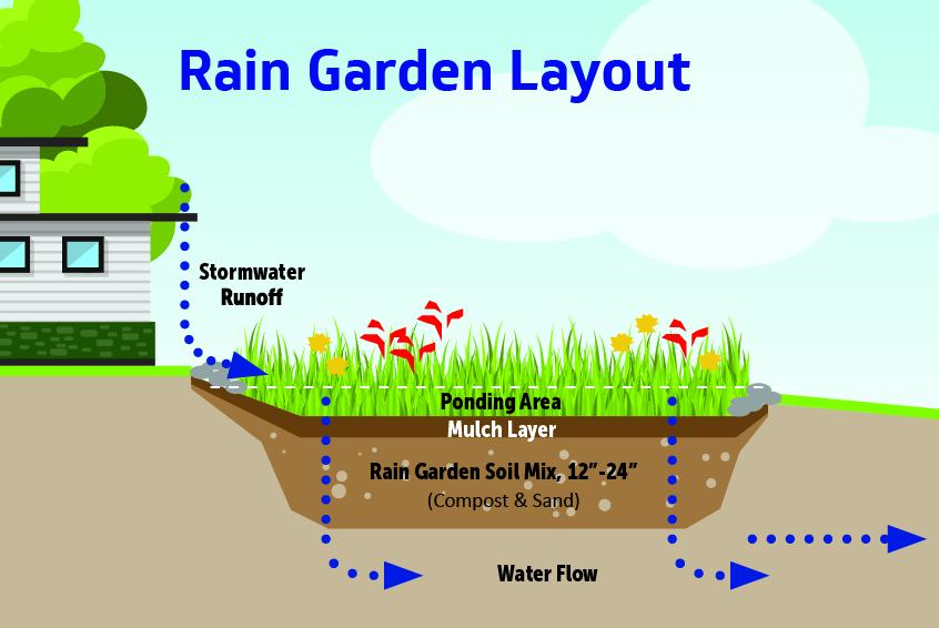 Hillsborough County  5 Steps for Creating a Rain Garden