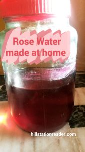Rose water made at home
