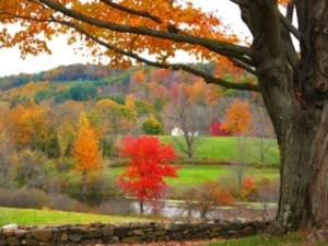 Hill-Stead estate walk