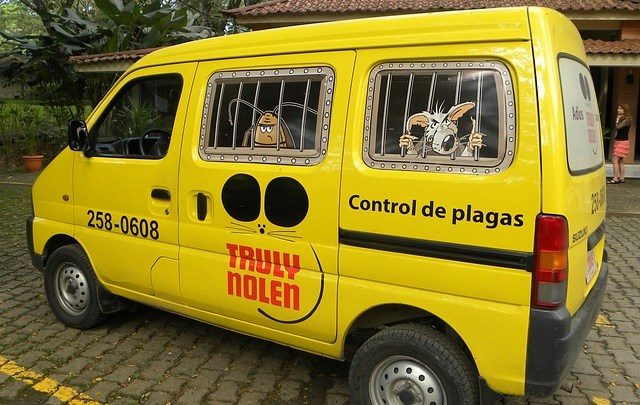 Yellow pest control van