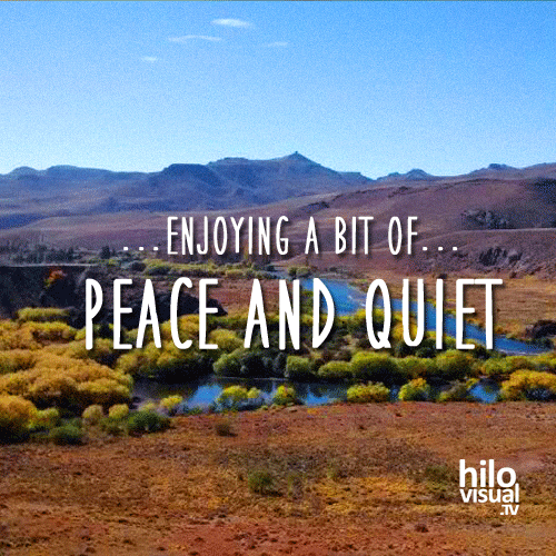 Enjoying a bit of peace and quiet ... with hilovisual.TV