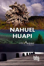 NAHUEL HUAPI - Download Nature Video