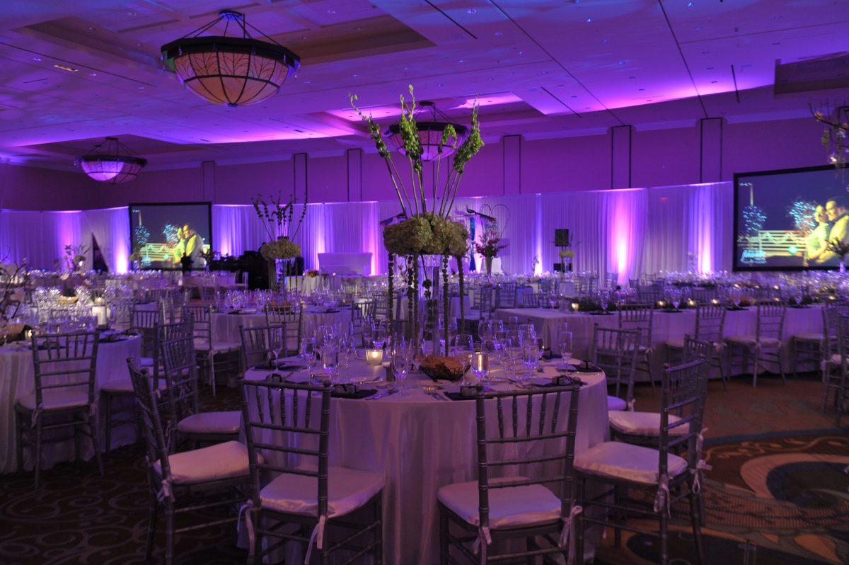 Orlando Weddings  Wedding Venues  Photos Gallery