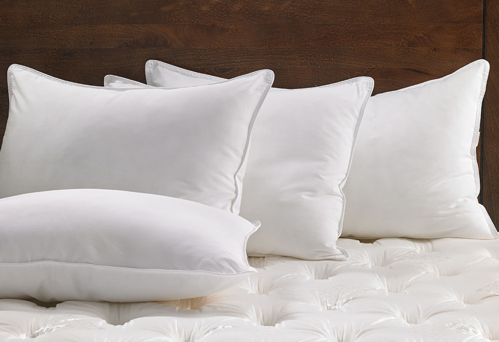Feather  Down Pillow  Hilton to Home Hotel Collection