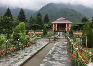 Chashme Shahi Garden in Srinagar