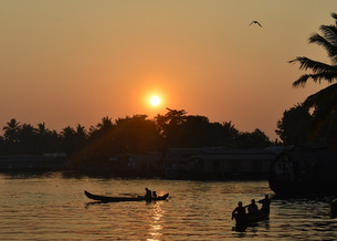 Alleppey - The Venetian Capital of India 7