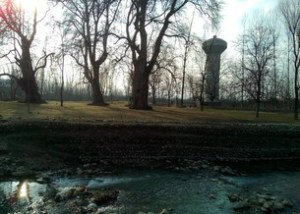 Char Chinar Garden in Srinagar