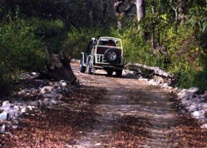 Ecotourism in Uttarakhand 6