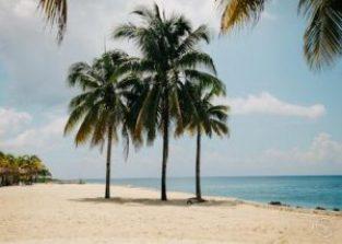 10 Best Beaches in India (2020) 2