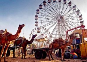 Pushkar Camel Fair 2020-Things You Need To Know Before You Go 2