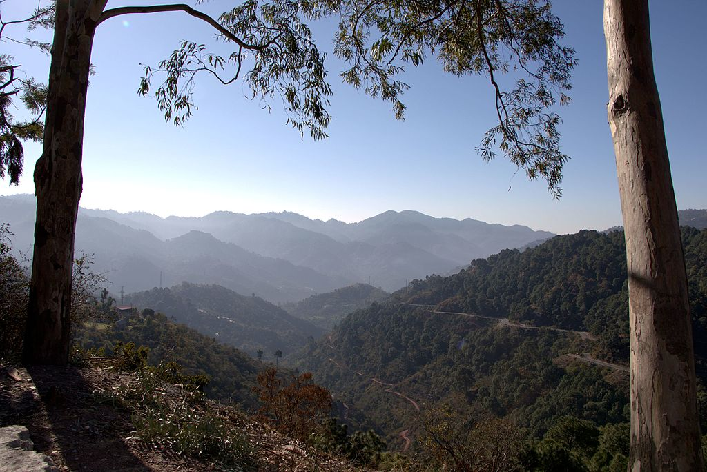Lower_Himalays,_Kasauli,_Himachal_Pradesh,_India