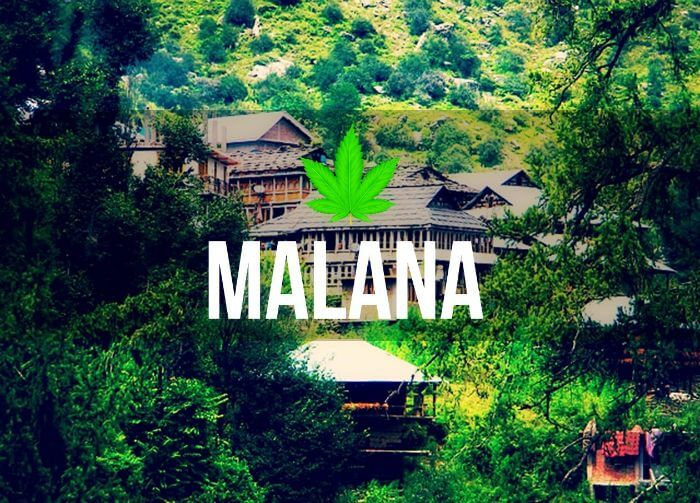 Malana Cream: Lesser known facts about a brand unto itself ...