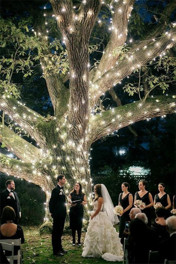 night wedding tree backdrop