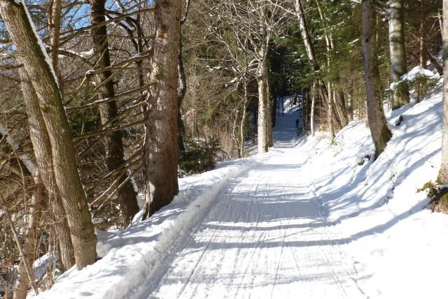 Winterwanderung Voralpen: Wanderweg im Winter