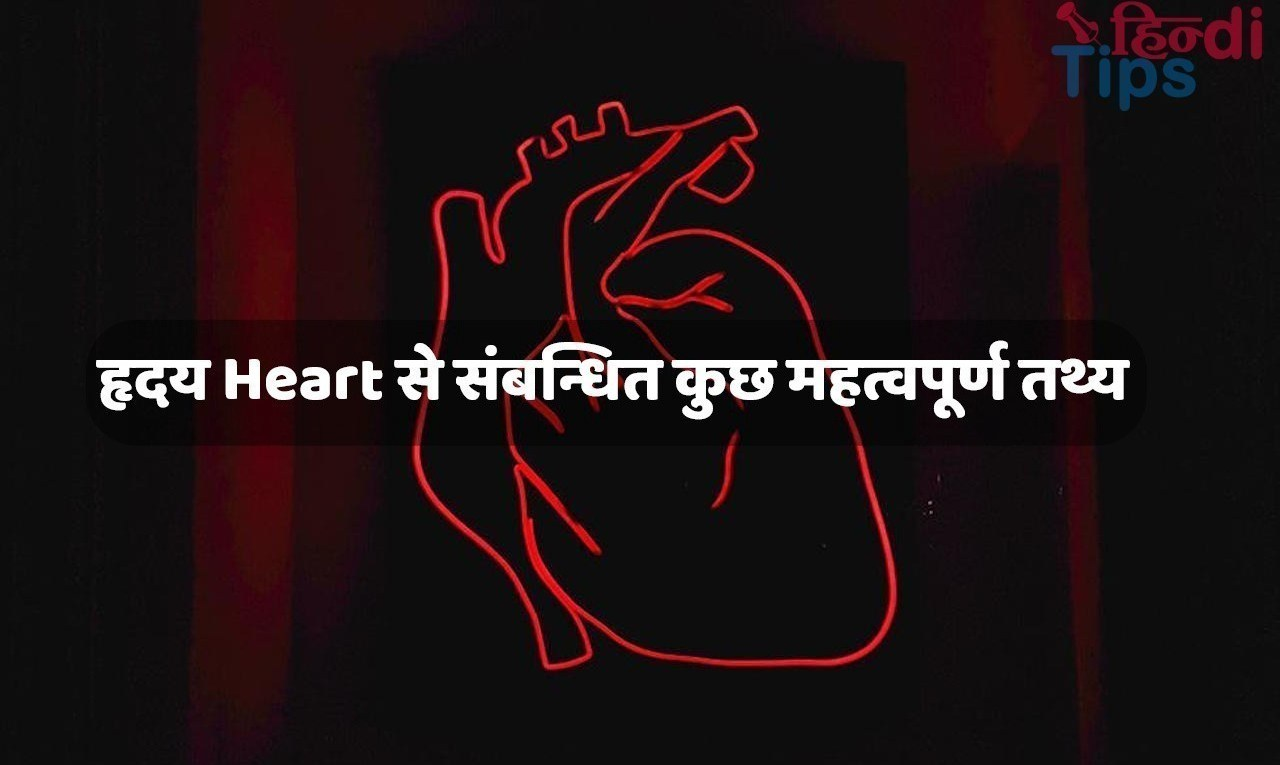 Healthy Heart Tips in Hindi