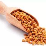 Fenugreek in Hindi Methi seeds