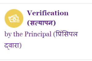D.EL.ED Admission Principal Verification