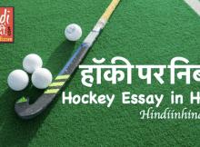 Hindiinhindi Essay on Hockey in Hindi