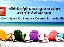 hindiinhindi How I Spent My Summer Vacation Letter in Hindi