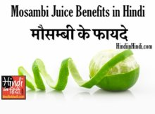 hindiinhindi Sweet Lime in Hindi