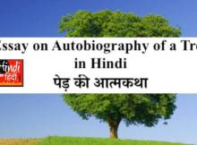 Essay on Autobiography of a Tree in Hindi