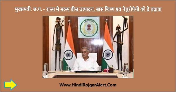 मुख्यमंत्री, छ.ग. - राज्य में मत्स्य बीज उत्पादन, बांस शिल्प एवं नेचुरोपैथी को दें बढ़ावा