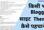 Blogger Theme Detector online in Hindi