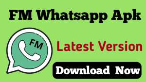 FM WhatsApp Download Kaise Kare