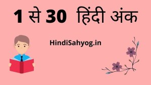 Hindi numbers 1 to 30 in Hindi Words
