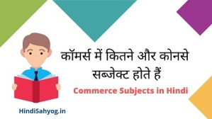 Class 11th Commerce Subjects in Hindi