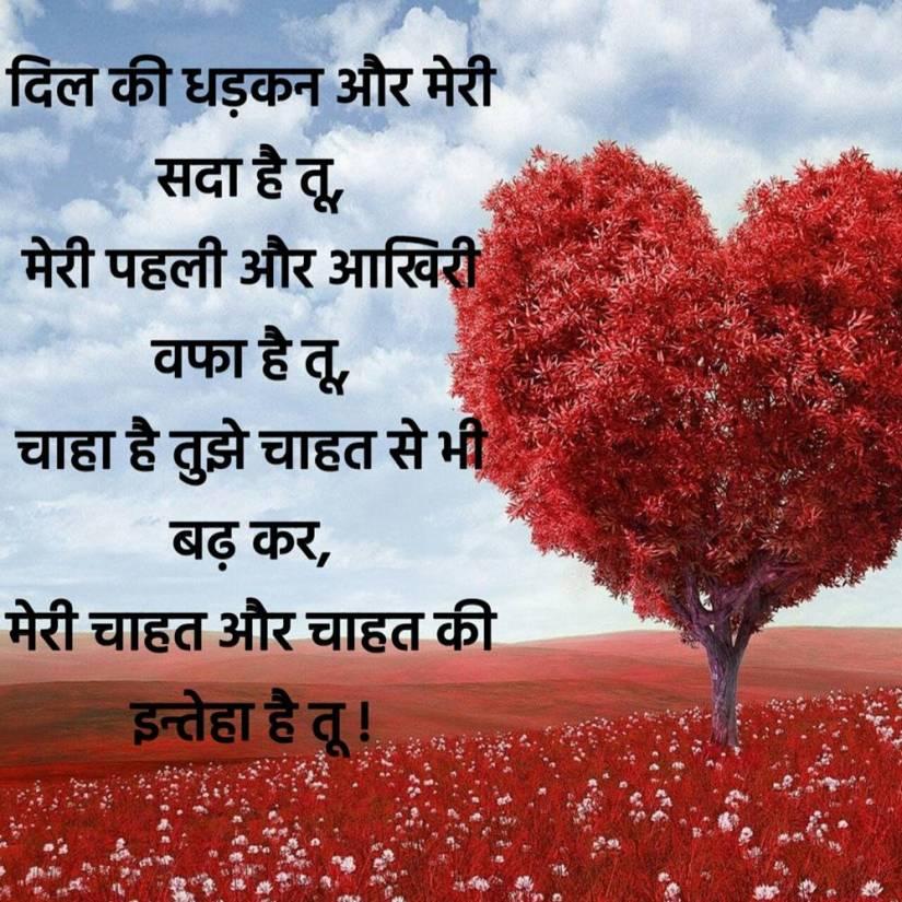 latest love shayari in hindi 18